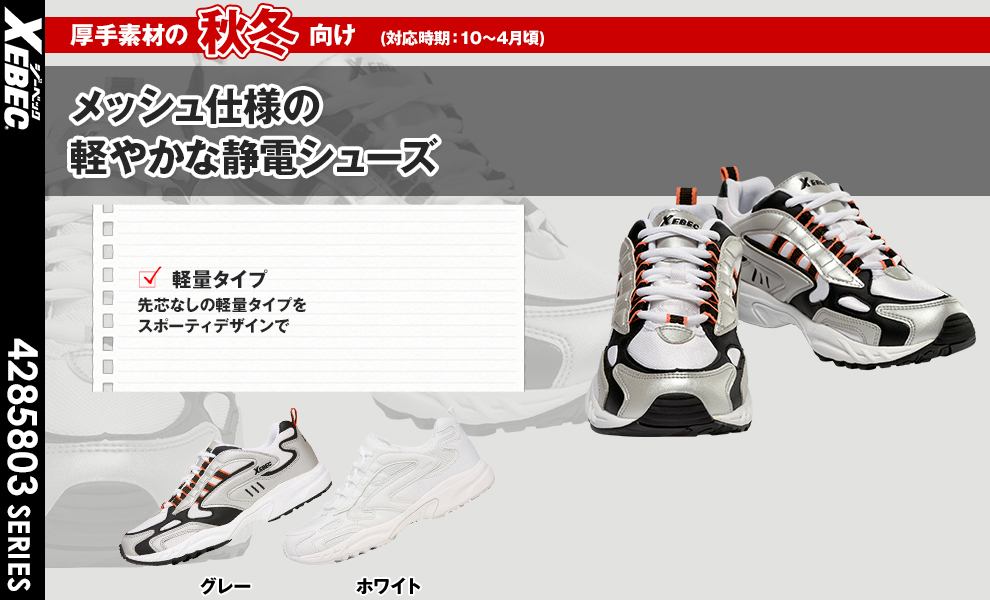 85803 靴